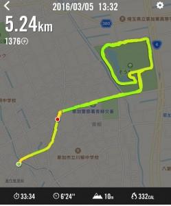 run_20160305